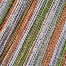 Шторы нитяные радуга с люрексом TT-0634